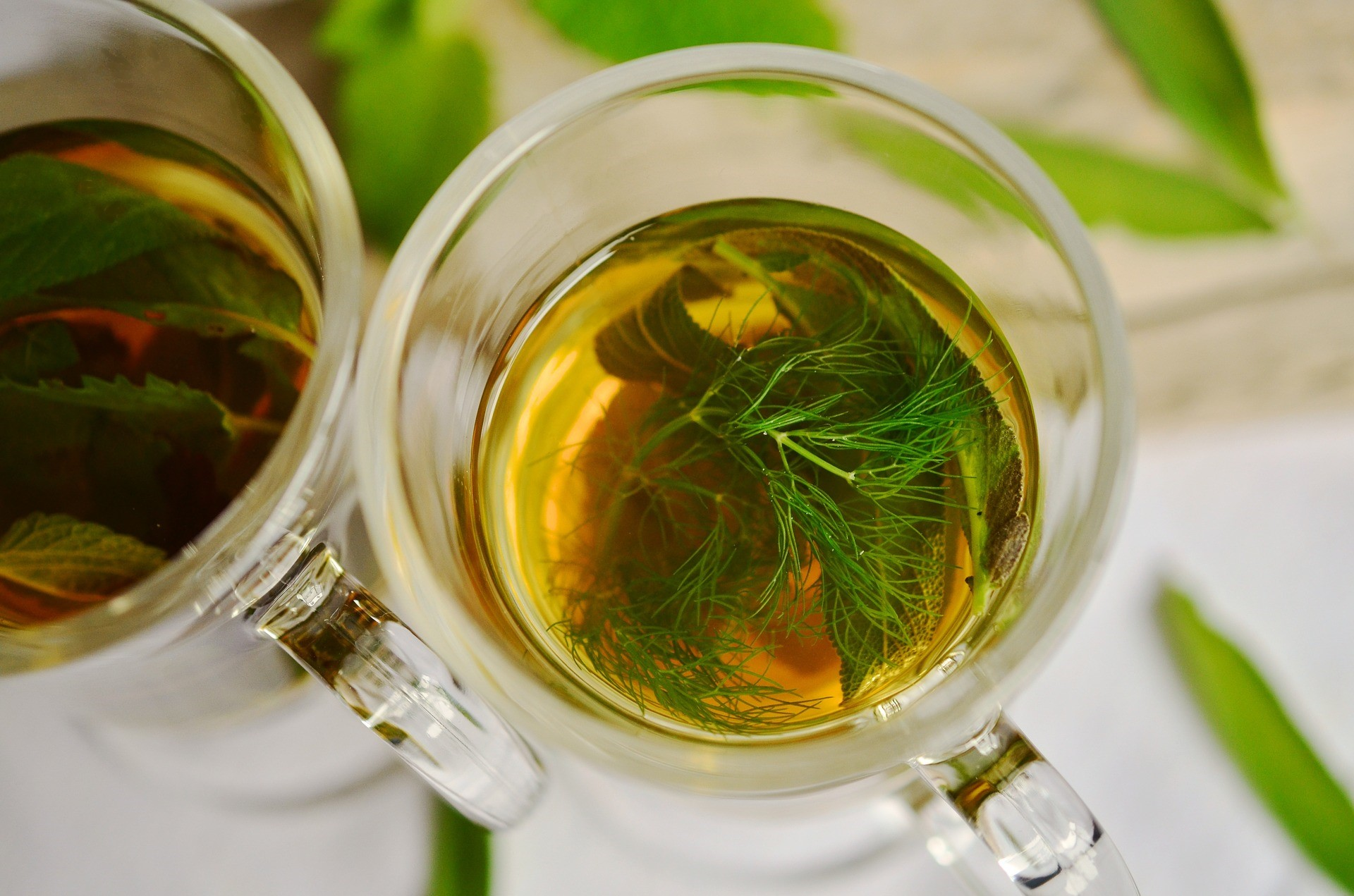 herbal teas are a good option for a weight loss diet