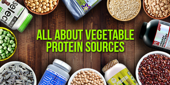 Vegetable protein sources-zumub