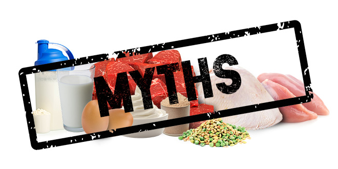 Myths about protein -zumub